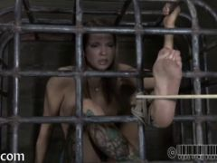 Rod torture for beauty\'s cunt