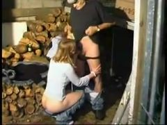 They Find A Beaver In The Woodshed !