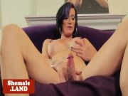 Amateur transsexual strips and jerks off