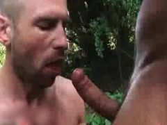 Gay male fucking and porno
